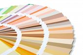 pic of interior decorator  - Paintbrush and colorful paint - JPG