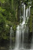 pic of cortez  - Llanod de Cortez Waterfall located in Costa Rica - JPG