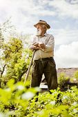 foto of hoe  - Old farmer with a hoe is having break from weeding - JPG