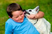 stock photo of cattle dog  - Happy boy being licked by his pet dog