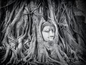 stock photo of stone sculpture  - Travel to Thailand - JPG