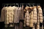 picture of overcoats  - The various fur coats at the store - JPG