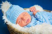 stock photo of knitting  - Newborn baby boy portrait in blue knitted hat - JPG