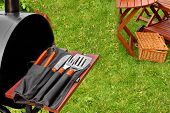 pic of lawn chair  - Summer Barbecue Grill Party Scene On The Backyard Lawn - JPG