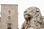 image of stone sculpture  - a sculpture of a granite stone lion in the city of Avila - JPG