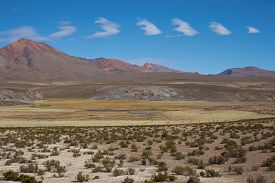 pic of open grazing area  - Large open plain high up in the Altiplano of northern Chile - JPG