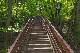 pic of ravines  - Wooden stair climbing out of the Golosow ravine in Kolomenskoye park in Moscow - JPG