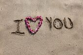 I LOVE You. the words I love you written in sand on the beach with a Hawaiian lei for the heart symb poster