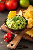 mexican guacamole dip and nachos tortilla chips poster
