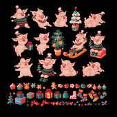 Big Set Of Cute Comic Cheerful Pigs And Christmas Toys And Cookies. Pig In Hat. Pig Sits On Gift Box poster