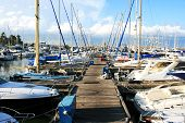 stock photo of larnaca  - Yachts in Larnaca port Cyprus - JPG
