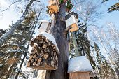 Many Birdhouses, For Birds And Feeders On The Tree. Houses For Birds In The Winter Under The Snow On poster
