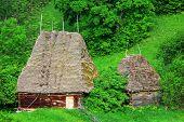 Постер, плакат: Древняя деревня дома в горах Trascau Румыния