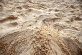 Woman Feet In Yellow Sand Of Tropical Beach. Tourist Digged In Beach Sand. Seaside Activity Digging  poster