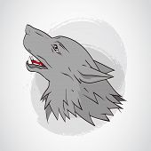 Vector Illustration With Wolfs Head. poster