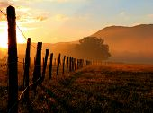 stock photo of cade  - A golden sunrise in Cades Cove - JPG
