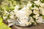stock photo of jasmine  - Cup of jasmine tea and jasmine flowers - JPG