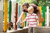 foto of goat horns  - Mom and son in the zoo feeding a goat - JPG