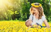 Mother  Feeding Her Baby In Nature Green Meadow With Yellow Flowers