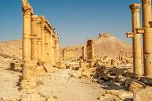 image of zenobia  - Ibn Maan fortress with Palmyra temple ruins  - JPG