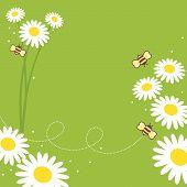 image of honey-bee  - party - JPG