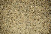 picture of terrazzo  - background image of terrazzo floor - JPG