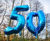 stock photo of helium  - blue helium balloons in the woods with bokeh background - JPG