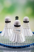 stock photo of shuttlecock  - A set of badminton. Paddle and the shuttlecock. Studio shot