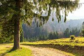 stock photo of pieniny  - autumn mountain landscape - JPG