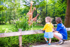 stock photo of little sister  - Happy school boy and his toddler sister cute little girl with curly hair wearing a dress having fun together in a zoo watching giraffes and other animals on a day trip during summer vacation - JPG