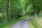 foto of naturel  - Winding road through a forest in the Pyrenees in Boussenac in France - JPG