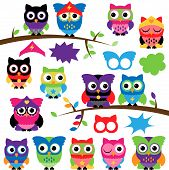 stock photo of superhero  - Vector Set of Superhero Owls with Branches and Speech Bubbles - JPG