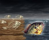 stock photo of survival  - Go all the way survival success as a surreal business metaphor for thinning the herd or best of breed symbol as a group of dead fish skeletons who failed to get to the ocean and one successful living survivor making it to the other side - JPG