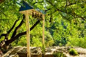 picture of gethsemane  - The Bell tower is in the mountain monastery  Chelter - JPG