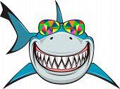 pic of great white shark  - Vector illustration - JPG