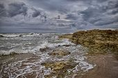 pic of tide  - Low tide leaves outdoors a rocky area that is normally under water - JPG