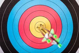 stock photo of archery  - Arrows in archery target - JPG