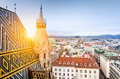 Vienna Skyline With St. Stephens Cathedral Roof, Austria poster