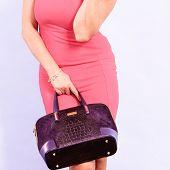 Постер, плакат: Elegant Mid Aged Woman In Dress With Bag