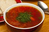 Russian Traditional Borscht