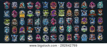 poster of Set Of Animal Emblems. Bear, Dinosaur, Eagle, Leopard, Wolf, Horse, Fox, Lion, Grizzly, Raptor, Hawk