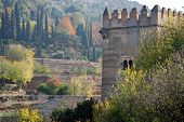 Image of alhamnbra palace and gardens.
