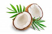 Half Of Coconut With Leaves Isolated On White Background poster