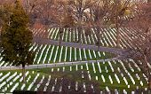 image of arlington cemetery  - Gravestones in Arlington National Cemetery - JPG