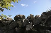 picture of irish moss  - an old ancient irish stone wall with a sky background - JPG