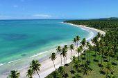 Vacation On Deserted Beach In Brazil. São Miguel Dos Milagres, Alagoas, Brazil. Fantastic Landscape. poster
