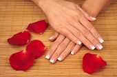pic of french manicure  - Very nice hands with french manicure on a mat - JPG
