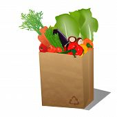 Recycled Sopping Paper Bag With Veggies