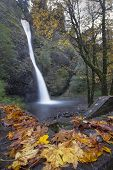 image of horsetail  - Horsetail Falls Along Columbia River Gorge Oregon in Fall Season - JPG