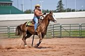 stock photo of barrel racer  - Western horse and rider competing in pole bending and barrel racing competition - JPG